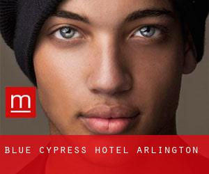 Blue Cypress Hotel (Arlington)